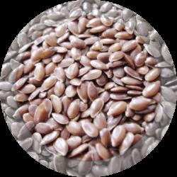 Лен семя 100 гр